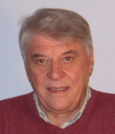 Ermes Micottis Pico